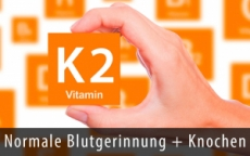 Vitamin K2 in Wildrosenöl, 50 ml